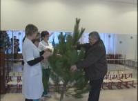 Благотворительная акция «Новогоднее дерево добра»