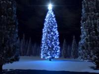Рождественская ёлка в ДК ВГС