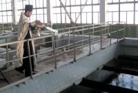 Крещенская вода попадет в камышинский водопровод
