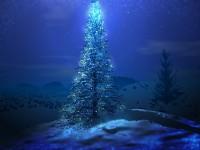 Городская Рождественская ёлка