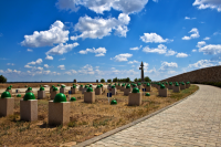 Трудовой десант в Россошках
