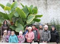 «Пилигрим» и «Умиление» в гостях у ботанического сада