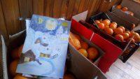 Рождественская акция «Добрый апельсин»